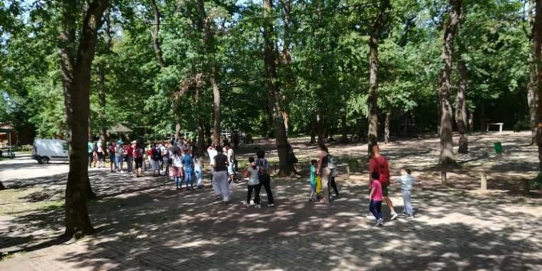 Posetili smo Bojčinsku šumu