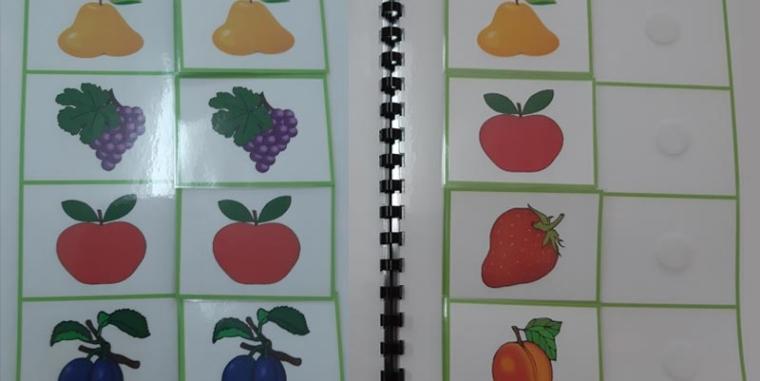 Радна свеска – Упаривање воћа
